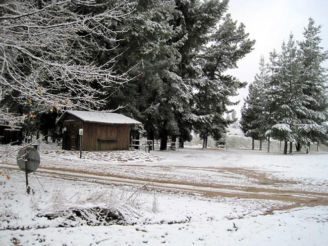 A snowy farm stall on Klondyke Farm