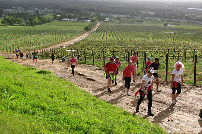 Steenberg Charity Trail Run
