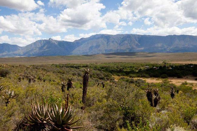 Bontebok National Park.
