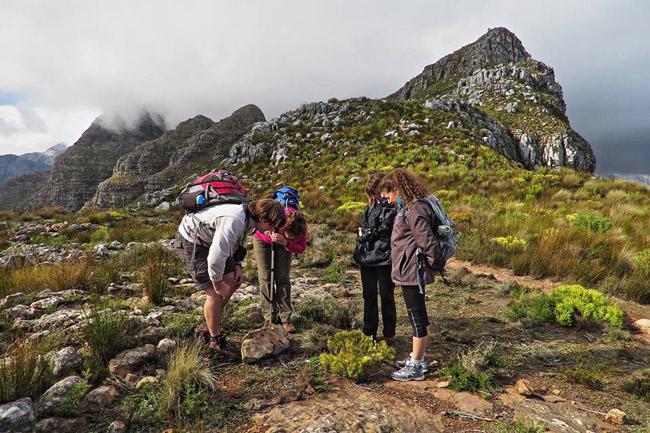 Helderberg Nature Reserve - West Peak Excursion