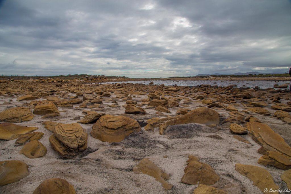 Sirkelsvlei Cape Point drought