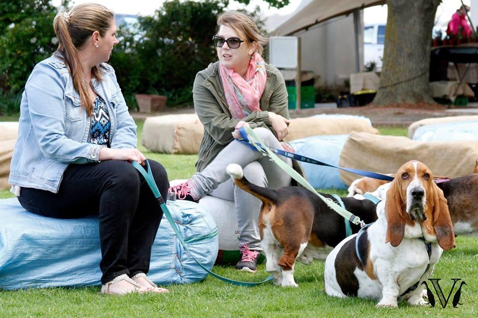 Family Market and dog walk