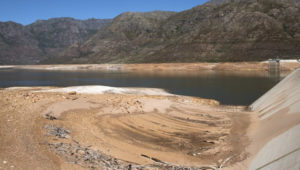 Cape Town water disease