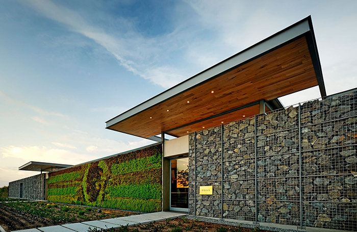 Cavalli: Food, art and wine under one cloche