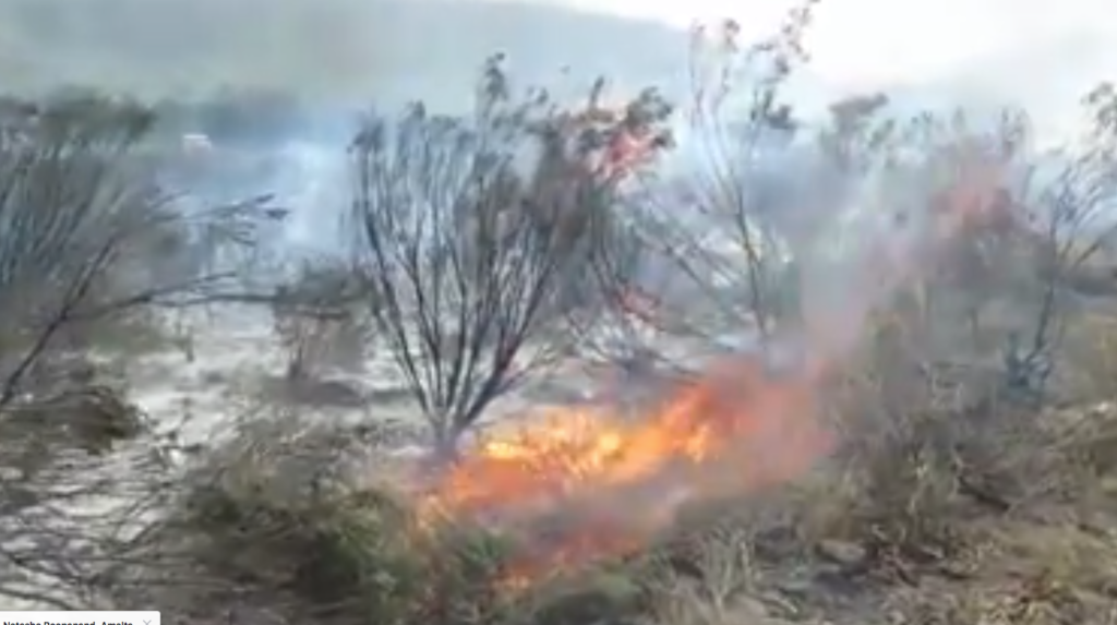 Watch: Fires rage in Cape Town, 500 left homeless