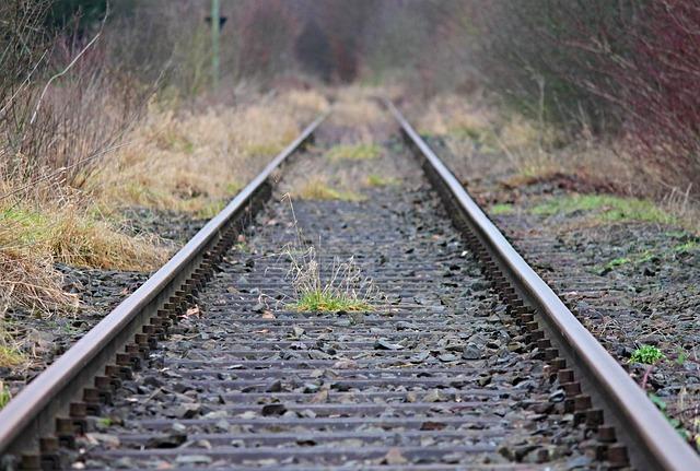 Elderly man killed by Rovos Rail train