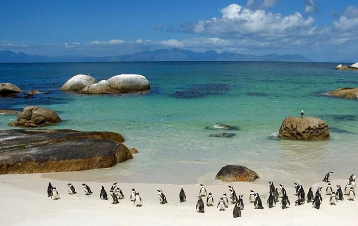 Hidden beaches in Cape Town