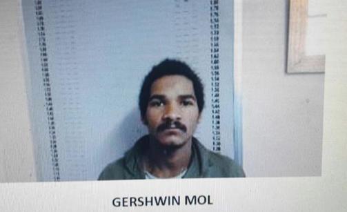 Escapee Gershwin Mol