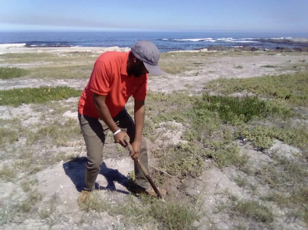 Land grab in Hermanus - 21 arrested