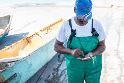 ABALOBI connects fishermen to cooks