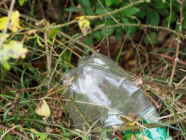 Cape Town's big fat plastic problem