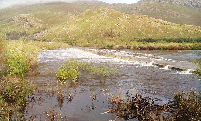 WATCH: The Breede River flowing
