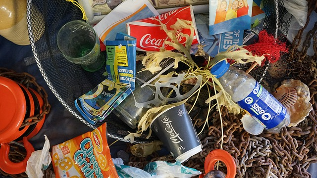 Government plans to ban harmful plastics