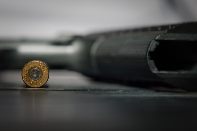 ConCourt rules gun licenses should be renewed periodically