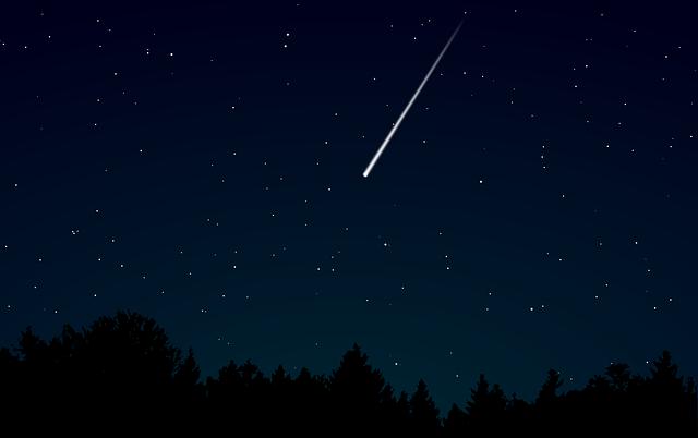 Is it an alien? No! It's a meteorite