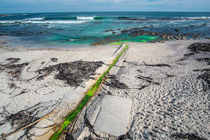 Green coolant leaks into Sea Point waters