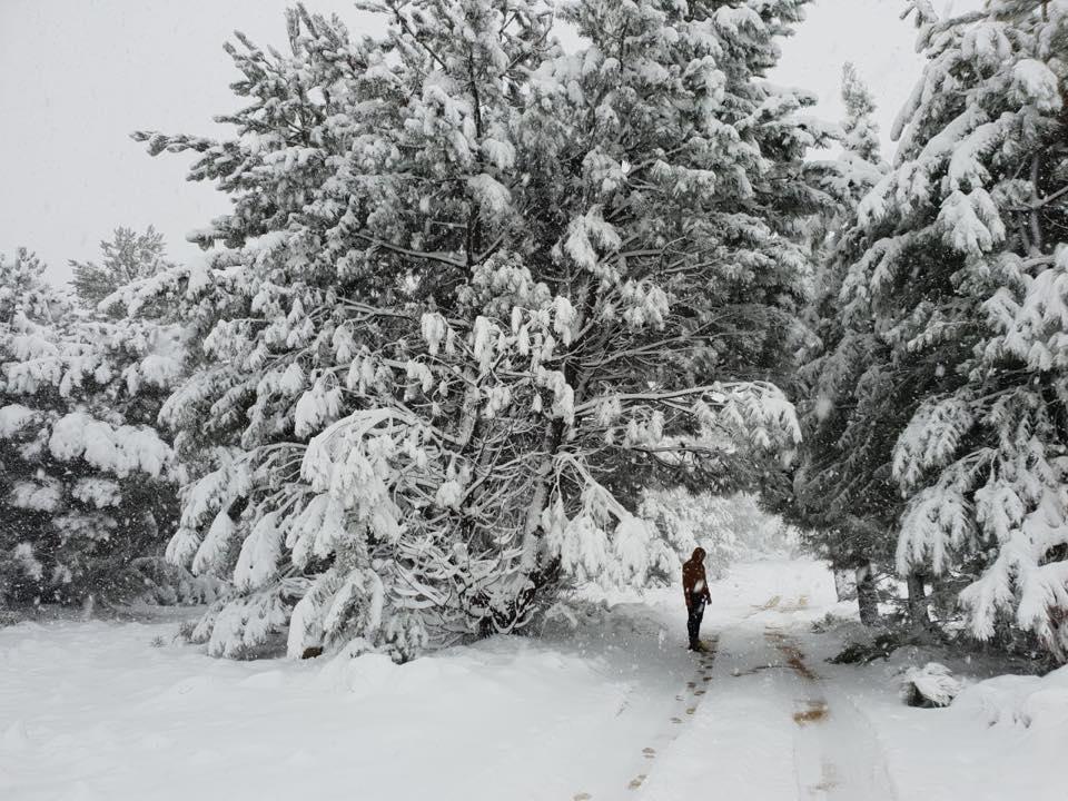 Fun snow activities to enjoy at Matroosberg Nature Reserve