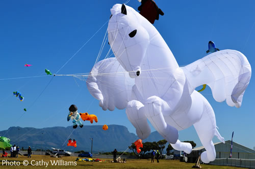 Cape Town Kite Festival entries open
