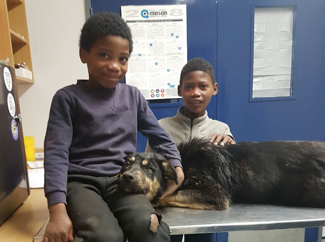 Brothers beat all odds to save beloved companion