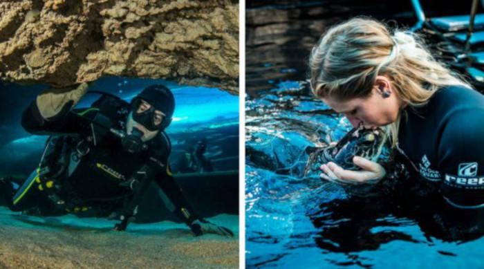 An Exclusive tour of Two Oceans Aquarium