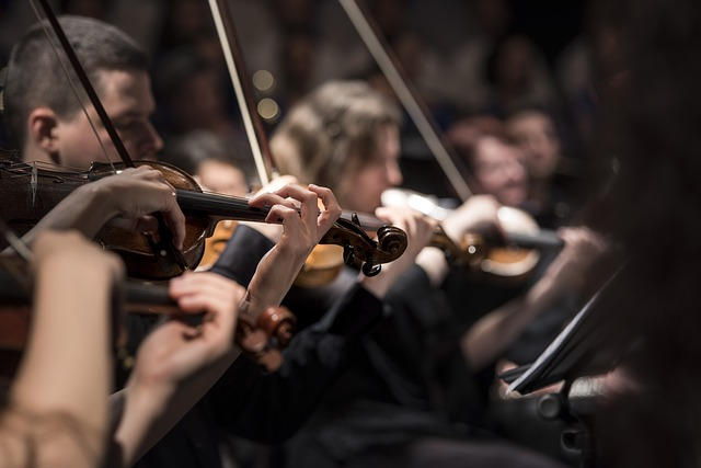 Cape Philharmonic Orchestra struggles with funding