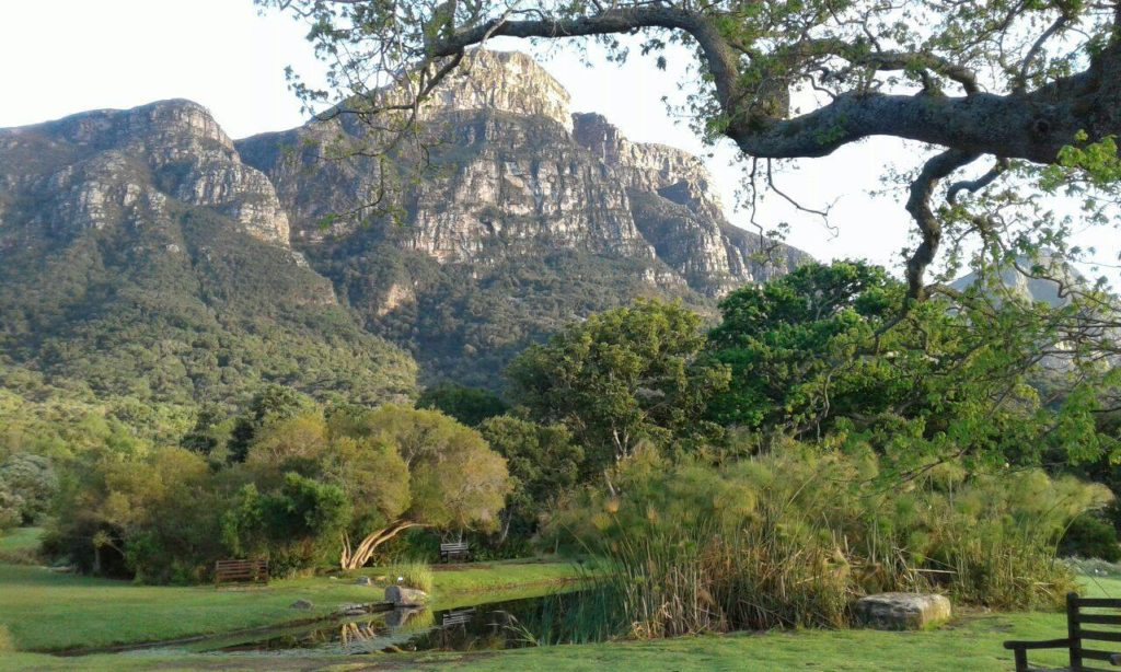 Must-visit picnic spots in the Cape