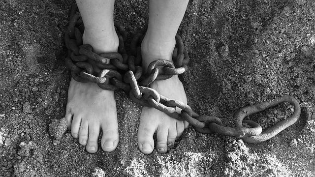 Human trafficking ring busted