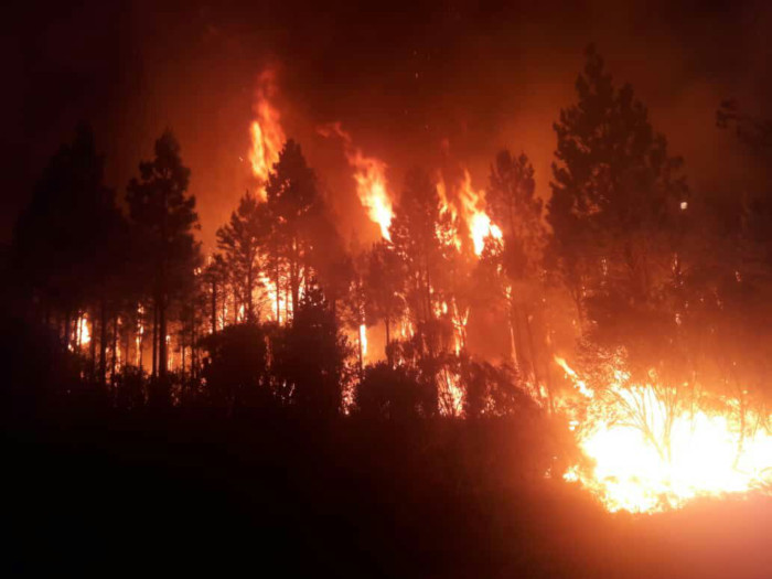 Tsitsikamma Forest burns