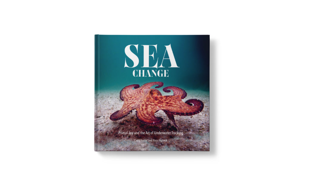 WIN: Local book about Cape kelp forests (closed)