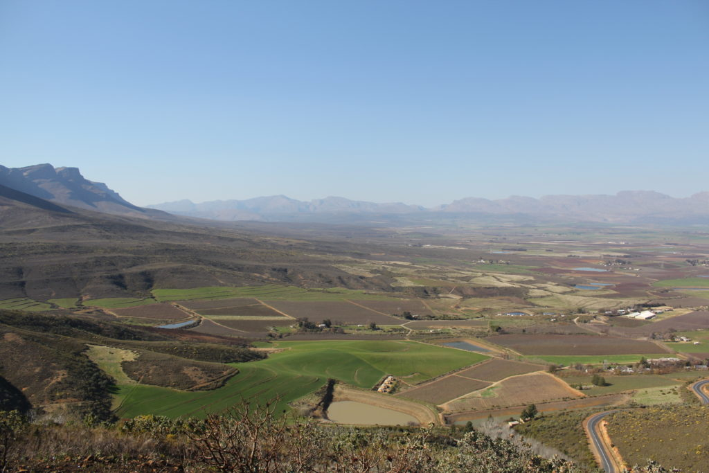 Things to do in the Winelands District