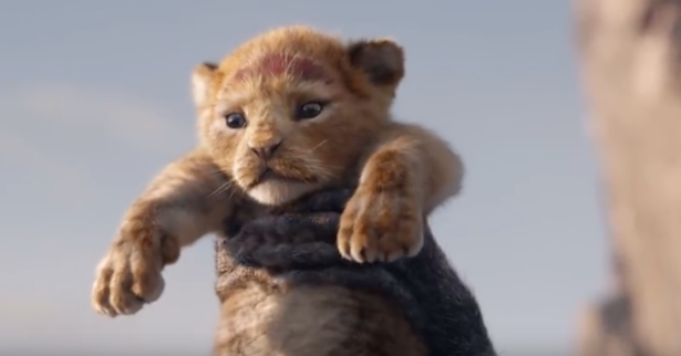 Live action remake of Lion King date announced