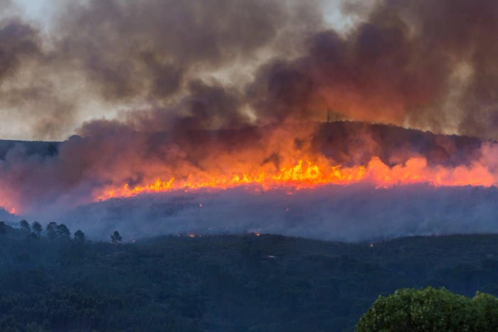 Paarl Mountain fire contained