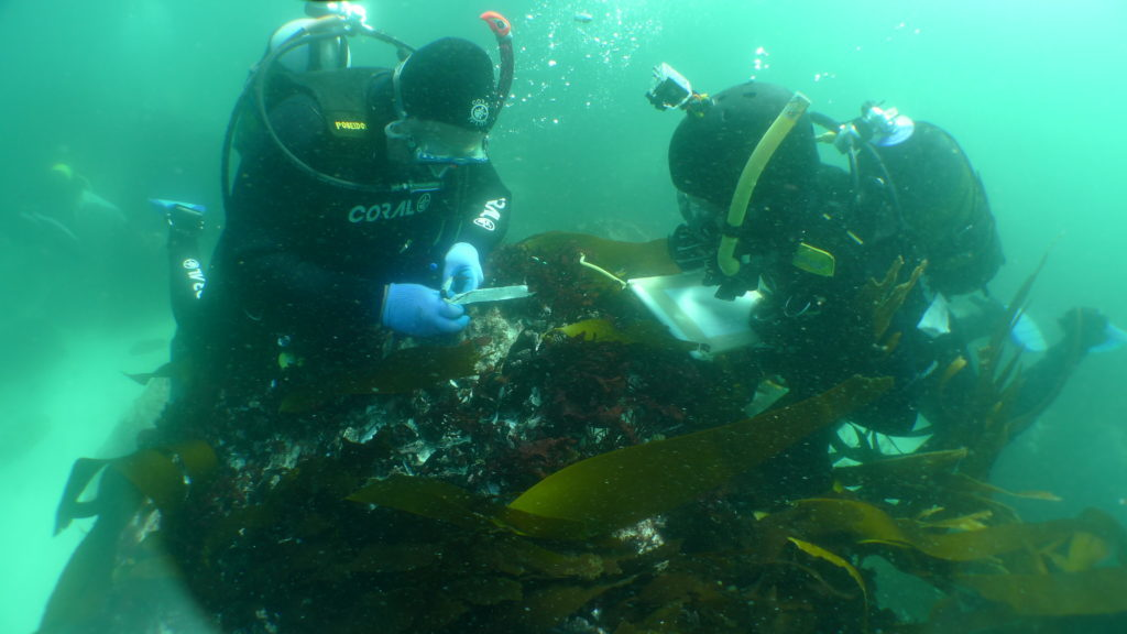 Clifton shipwreck location named National Heritage Site