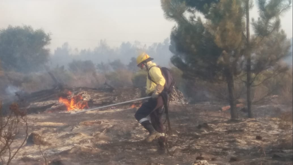 Garden Route fires claim 10th victim