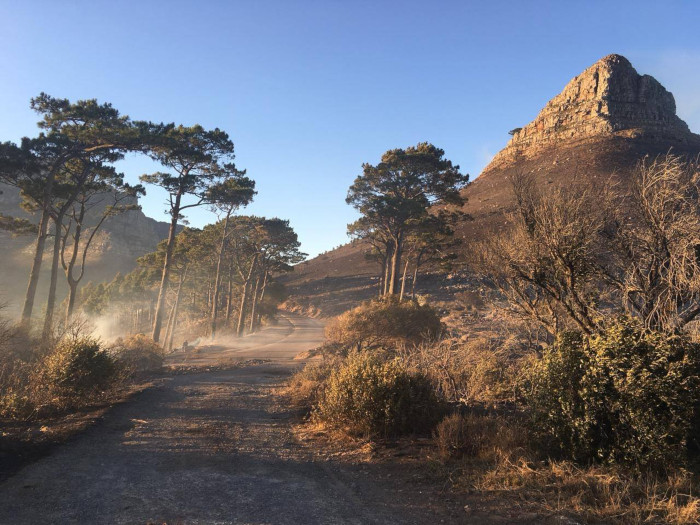 Fire delays Lion's Head trail reopening
