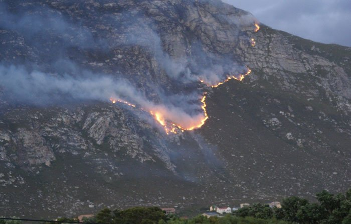 Man arrested for Betty's Bay and Pringle Bay fires