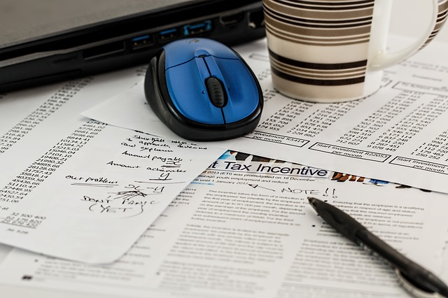 Expat tax mandatory from 2020