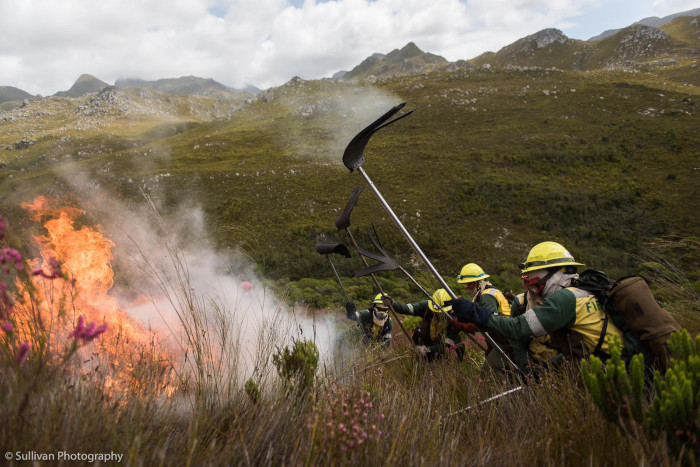 Watch: The dangers of 'fire tourists'