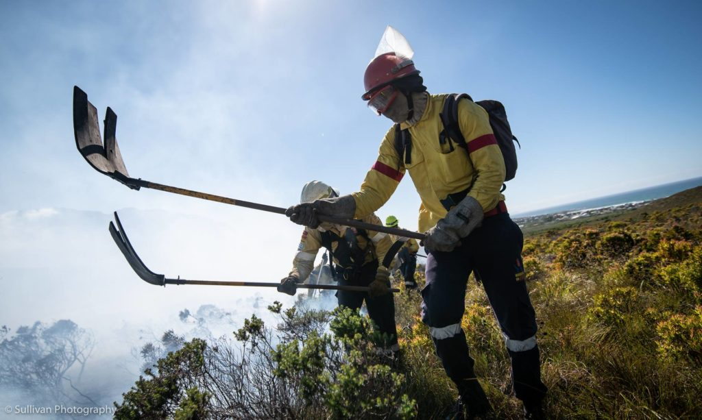 How to stay safe during a wildfire