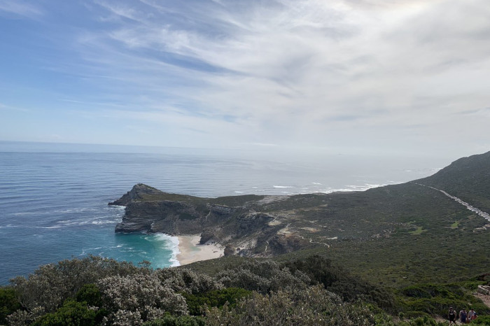 Cape Town enters Global City Nature Challenge 2019
