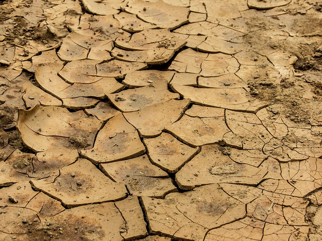 Rain causes dry Karoo to flood