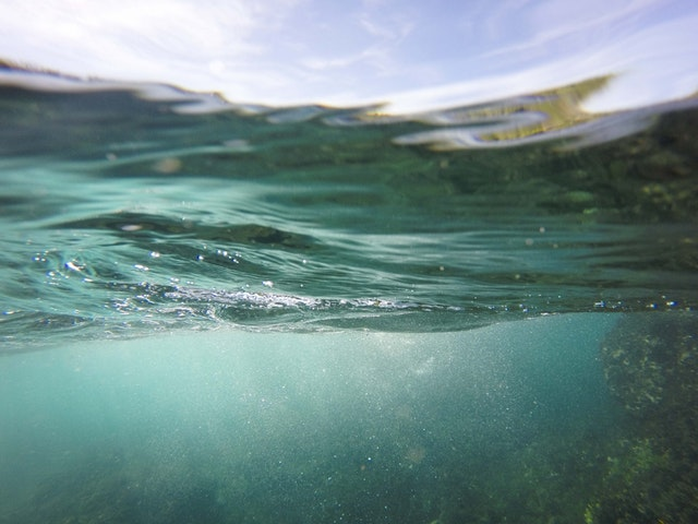Chemicals and drugs pollute Cape Town waters