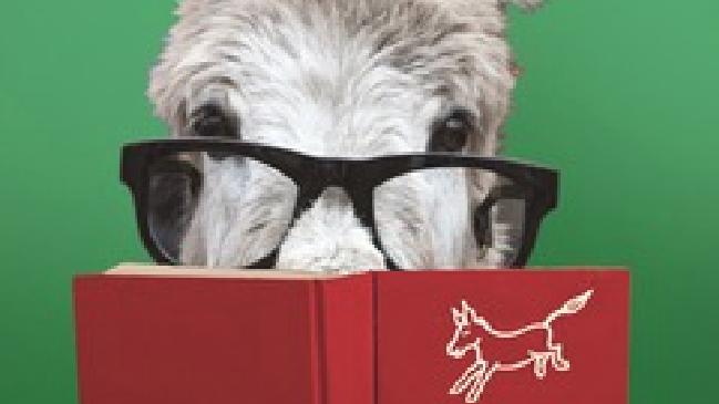 Eseltjiesrus Celebrates 15 Years of Reading Pleasure