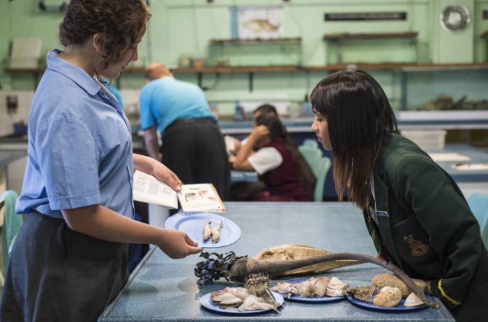 Aquarium offers free Zoology and Oceanography courses