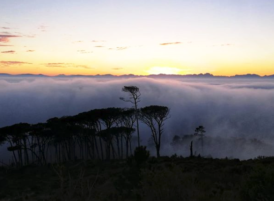 A foggy start to the week in Cape Town
